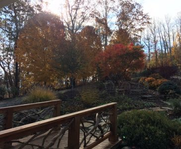 Buttercup Vacation Rental Fall 2017